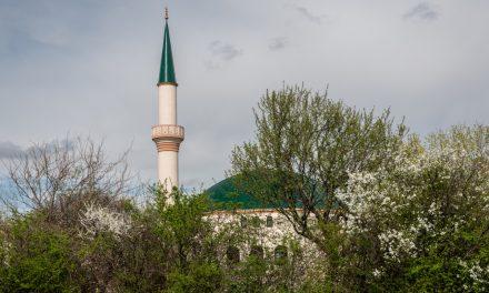 Avusturya Federal Ordu Çalışanları Cami Saldırısını Engellememekten Yargılanacak