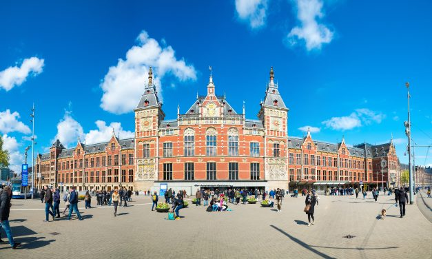 Hollanda İlkokuldan Üniversiteye Telafi Eğitimi Başlatıyor