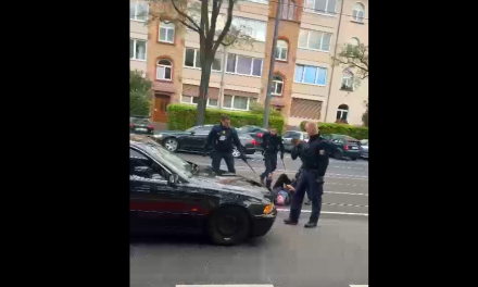 Frankfurt Polisinin Psikolojik Sorunları Olan Adama Şiddeti Tepki Çekti