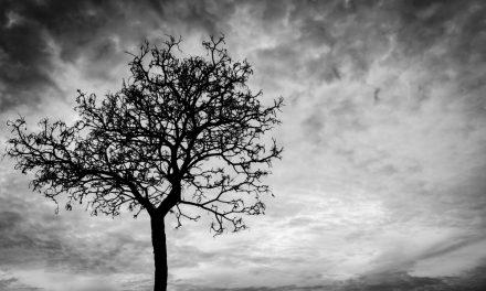 Ölüm Gerçeğini Kabullenme Ve Yas Süreci